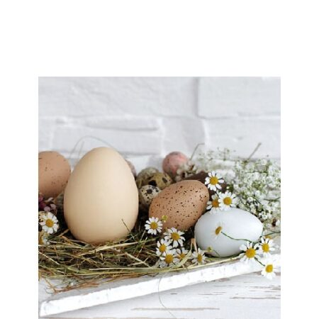 Serviette Pastel Eggs 22514290