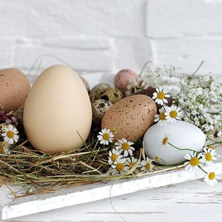 Serviette Pastel Eggs 23314290