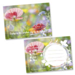 feelfreecards Sommerwiese