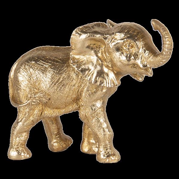 Elefant 6PR3444